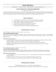 Professional Sales Resume Gorgeous Real Estate Salesperson Resume Sample For Sales Professional S