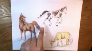 how to color a horse art ala carte