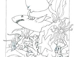 Coloring Book Pages Ocean Animals Ring Book Pages Ocean Animals Sea