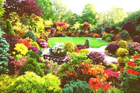 most beautiful flower gardens in the world gousicteco images azalea flowers early summer