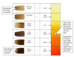 2 Ways To Do A Tint Back Haircolor University Com