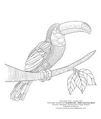 Small Picture Toucan Free Page Sample DoodleCraft Adult Coloring Book