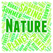 Word Of Nature Nature Word Meaning Words Scenic And Environment Stock Photo