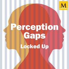 Perception Gaps