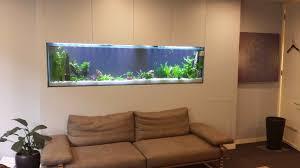 Custom Aquariums & Aquarium Furniture
