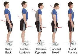Human Posture Chart Posture Exercises Better Posture Bad