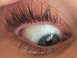 eyelash curler fail. in her attempt at achieving the perfect curly lashes, miley seems to have lost a chunk of them. she captioned close-up: \u0027f****** curler chopped my eyelash fail l