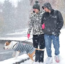 Snow Scenes From The Nov 15 Storm Local News Heraldmailmedia Com