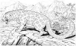 Картинки раскраски животные в природе