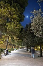 tree lighting ideas. Tree Lighting Ideas Large Size Of Marvellous Outdoor Lights Scheme Rope Light I