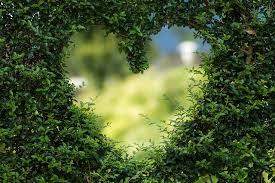 Zugesandte Liebesgedichte