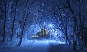 Afbeeldingsresultaat voor gratis foto winter