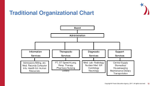 Organizational Structure Of A Hospital Ppt Download