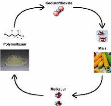 polymelkzuur maken