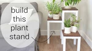 diy modern wooden plant stand for indoors with blogger kate riley