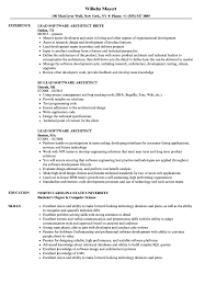Lead Software Architect Resume Samples | Velvet Jobs