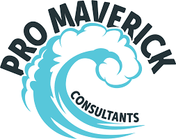 Unconventional customer acquisition solutions | Pro Maverick Consultants