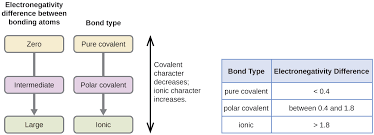 6 1 Electronegativity And Polarity Chemistry Libretexts