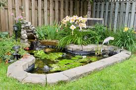 Take The Plunge Tips For Building A Pond  DRu0027s Country Life BlogSmall Ponds In Backyard