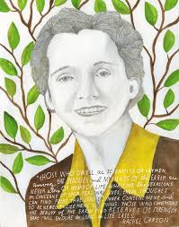 silent spring essay when she penned her book silent spring marine biologist conservationist and writer rachel
