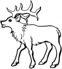 Small Picture Elk Coloring Page Elk Adult coloring and Patterns