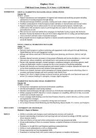Sample Email Resume Example Of A Sales Associate Cover Letter