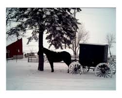 cultural anthropology through the eyes of an insider outsider s  specifically the densest populations of amish communities are found in pennsylvania ohio illinois and na still even though they occupy the same
