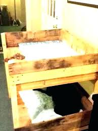 raised dog bed diy outdoor plans bunk beds with stairs