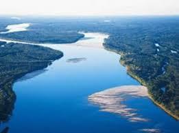 Resultado de imagem para em rios