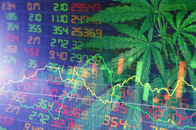 Will 2021 be the year the cannabis industry makes a comeback?