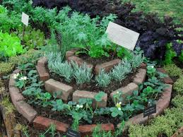herb spiral eclectic garden
