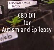 cbd and autism