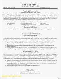 Microsoft Word 2007 Resume Template Best Of Resume Template