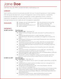 Resume Lesson Plan Fake Experience On Resume Resume For Your Job Application