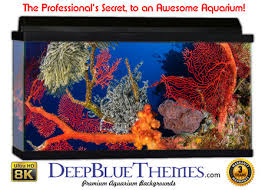 Aquarium Backgrounds For Any Size Tank