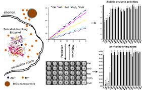 Sustainability Of Nanotechnology Growth Requires High Throughput