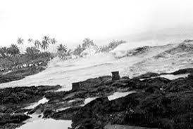 「The 8.6 Mw Aleutian Islands earthquake 1946」の画像検索結果