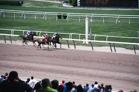 2015 Belmont Stakes Chart Belmont Stakes Wikipedia