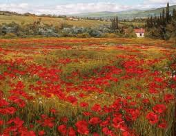 poppies tuscany landscape 3 by ine zimmerman oil