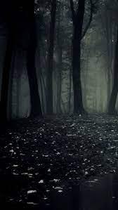Dark Forest 4k Mobile Wallpapers ...
