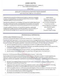 Resume Examples For Professionals Interesting Executive Resume Samples Professional Resume Samples