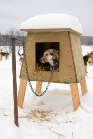A Visual Guide on How to Build a Dog House in Simple StepsIf you plan the design of your dog house according to the location and size of your dog  then by following these instructions  you should have no problems