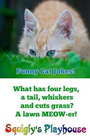 Small Picture 35 best Riddles Jokes Knock Knocks and Other Funny Stuff for