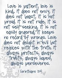 Love Is Patient Quote Gorgeous Download Love Is Patient Quote Ryancowan Quotes