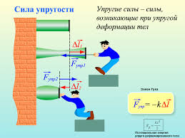 Презентация Сила упругости закон Гука Физика Презентации  Количество