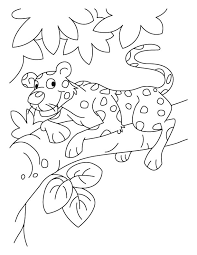 Baby Leopard Coloring Pages Get Coloring Pages