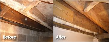 crawl space encapsulation do it yourself. Exellent Yourself Crawlspace Mold Removal Throughout Crawl Space Encapsulation Do It Yourself
