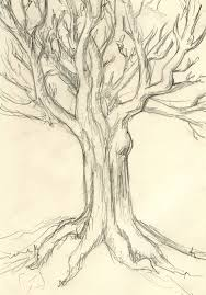 drawing 125 no time rough tree