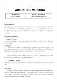 Resume Professional Summary Examples Unique Entry Level Resume Summary Examples Objective Summary For Resume
