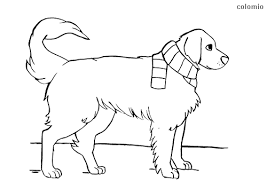This dog coloring page features an adorable pooch named pal, and he looks like he's ready to play! Dogs Coloring Pages Free Printable Dog Coloring Sheets